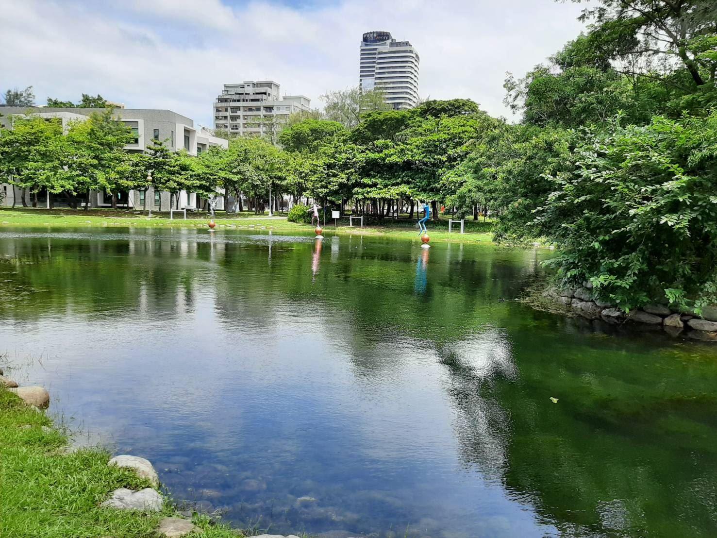 1080815養工新聞-中央公園湖水現況.jpg