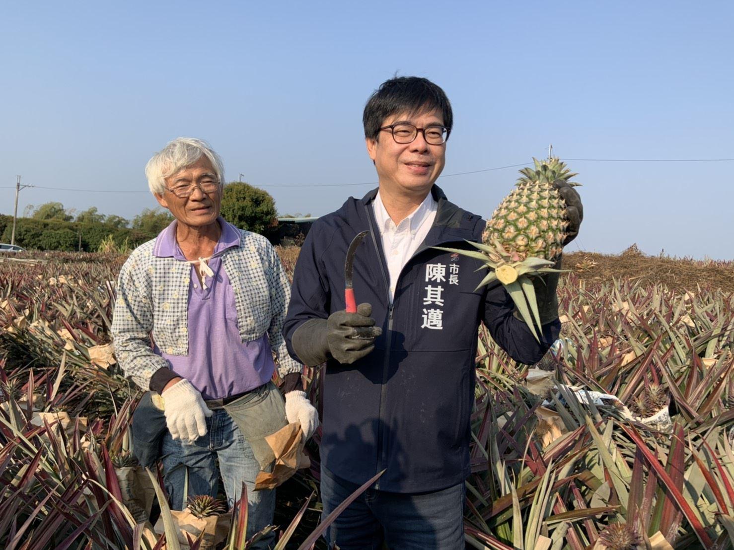 1100226降低中國大陸停止台灣鳳梨進口衝擊通稿01.jpg